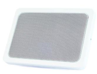 ABT-W6 white